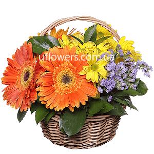 Корзина цветов Яркий комплимент